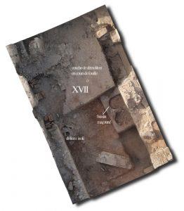 Fig. 5. Vue aérienne de la partie ouest de l'Ensemble 1: salle souterraine avec le bassin à dolia (S. Sanz).