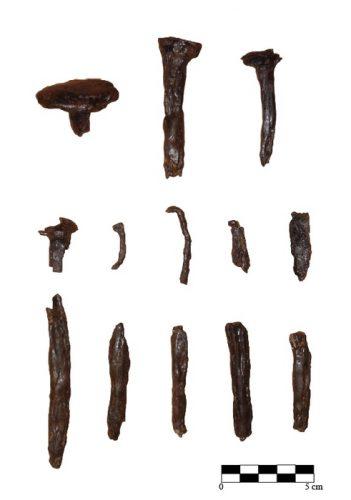Fig. 6. — Exemples de clous et pointes en fer