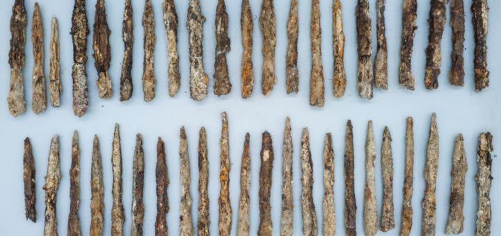 Fig. 5 - Une partie du lot de fers de trait.